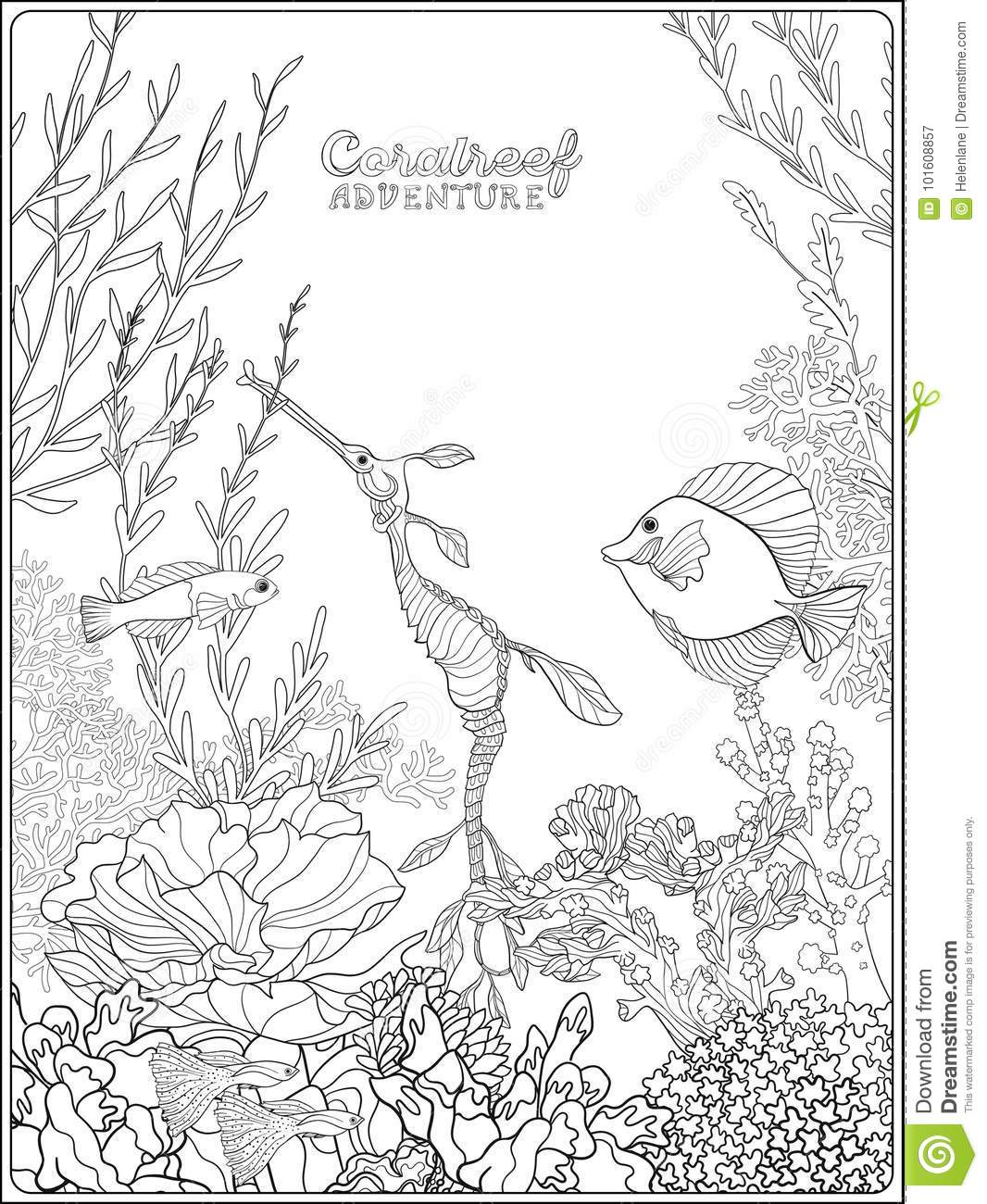 Adult Coloring Book Coloring Page With Underwater World Coral Reef