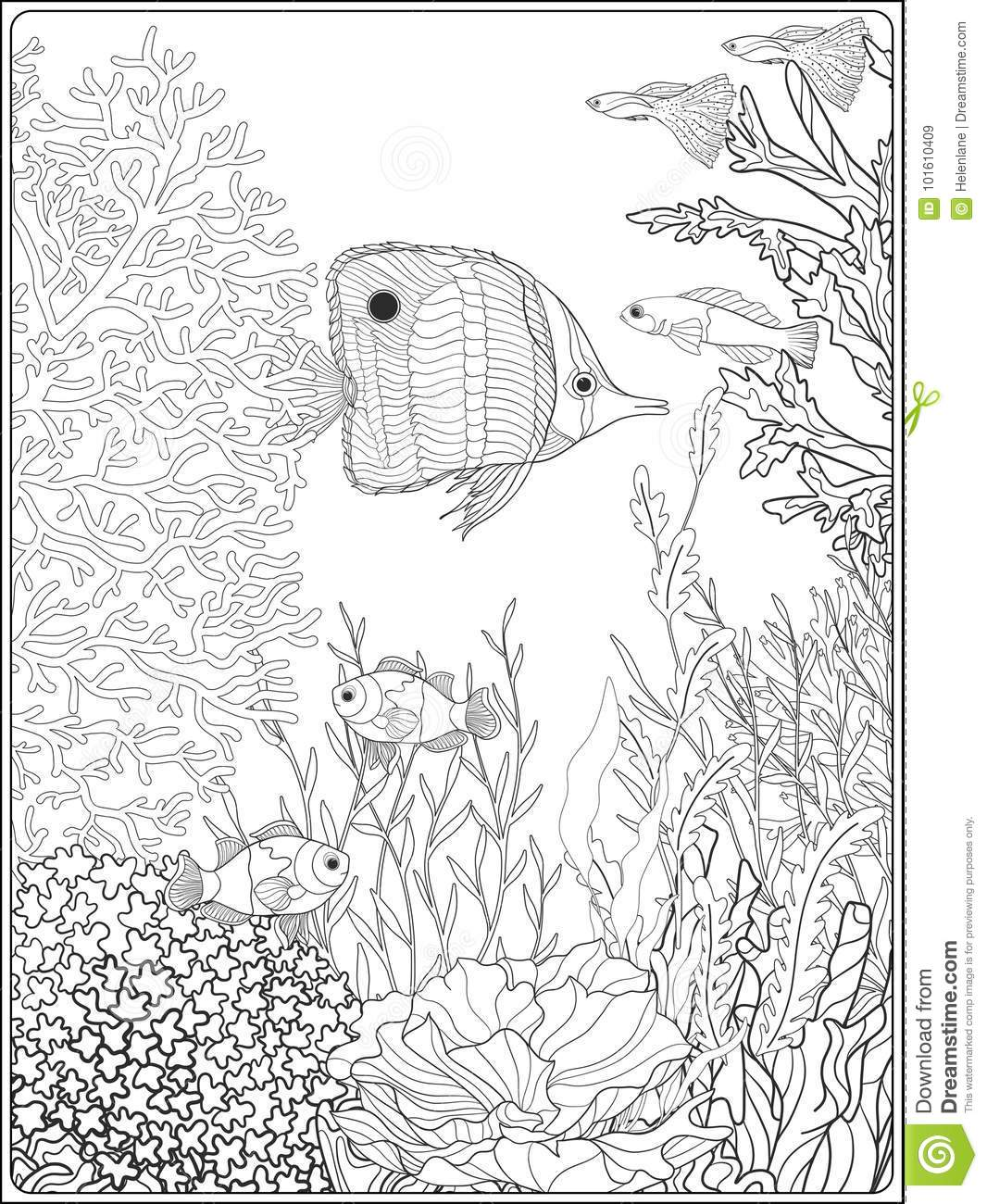 Adult Coloring Book. Coloring Page With Underwater World ...