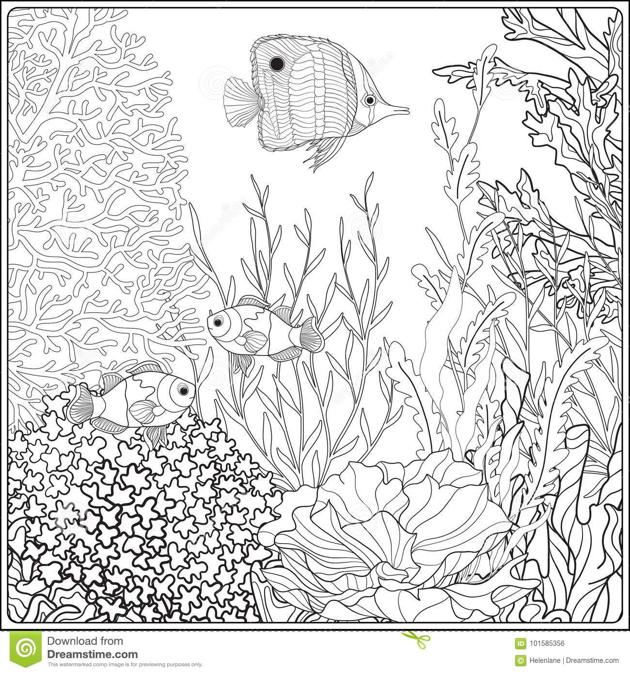 Adult Coloring Book. Coloring Page With Underwater World Coral ... | 1390x1300