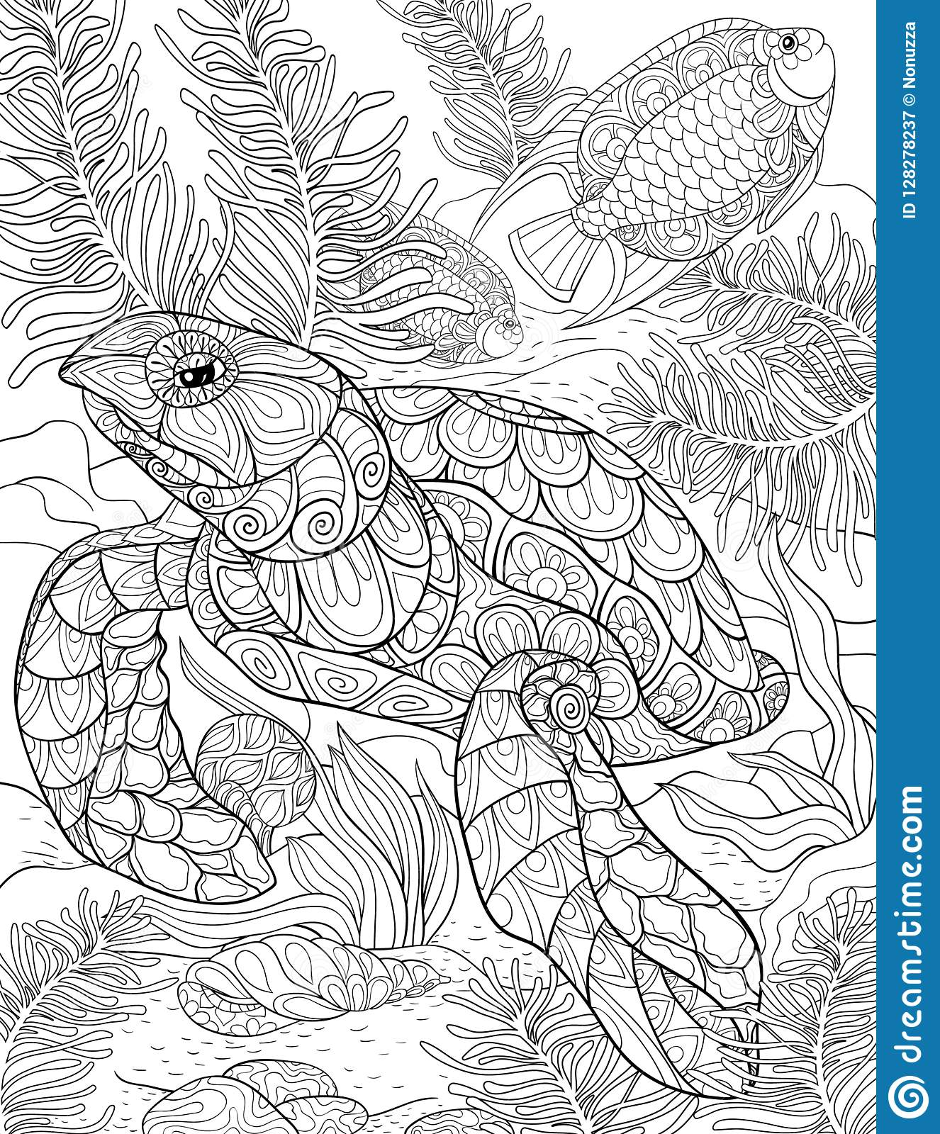 Adult Coloring Page,book A Cute Turtle Illustration For ...