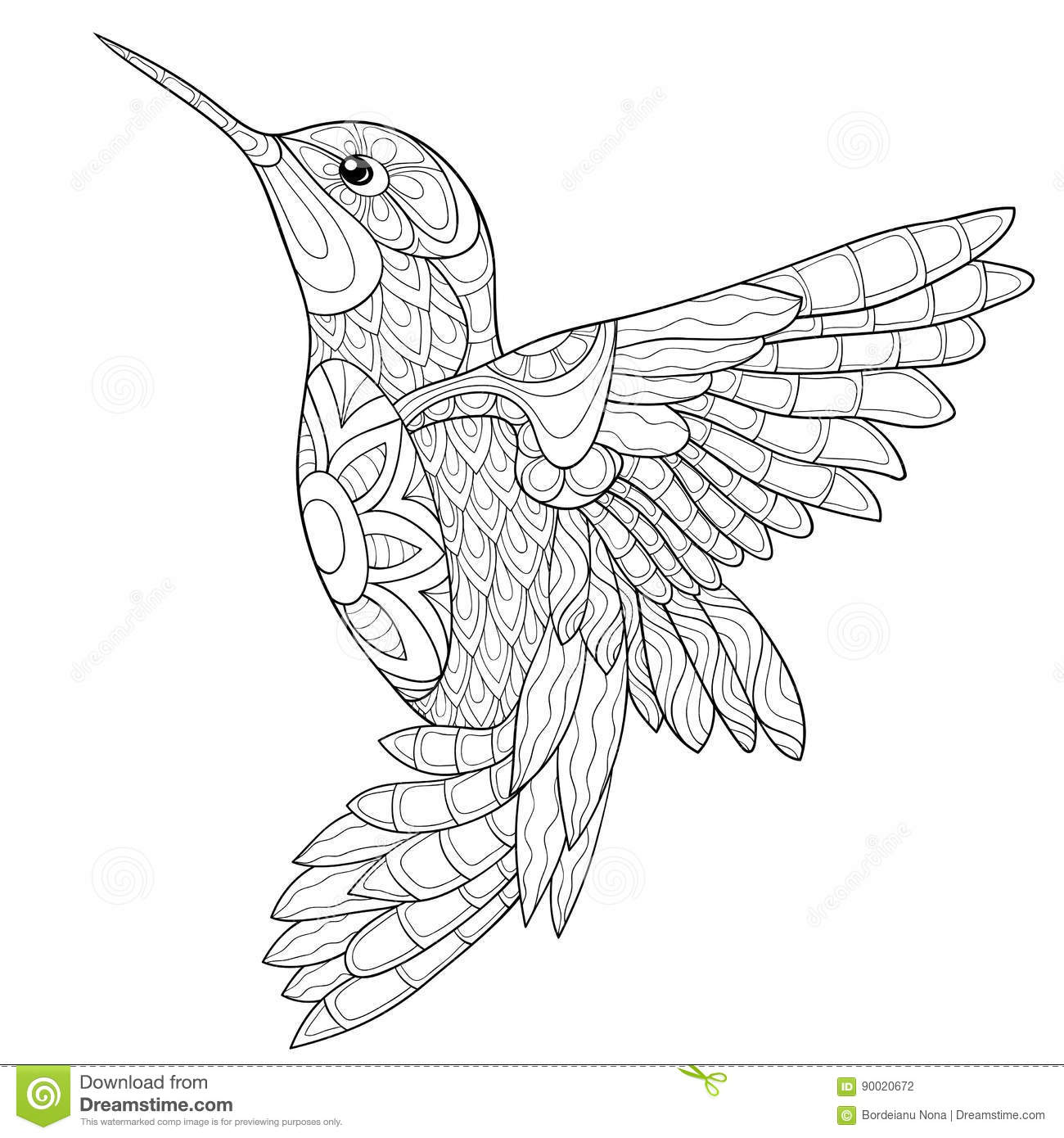 Adult coloring page humming bird