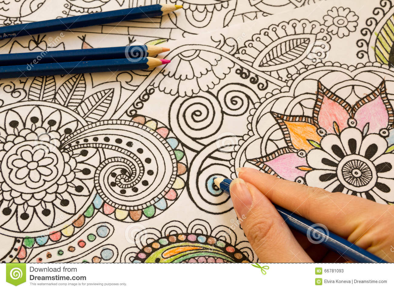 Adult Colouring Books With Pencils New Stress Relieving