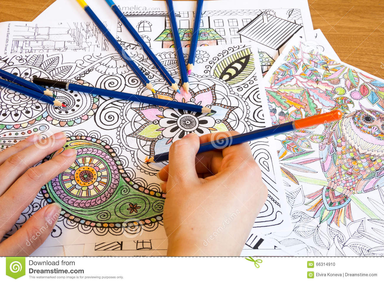 Adult Colouring Books With Pencils, New Stress Relieving Trend ...