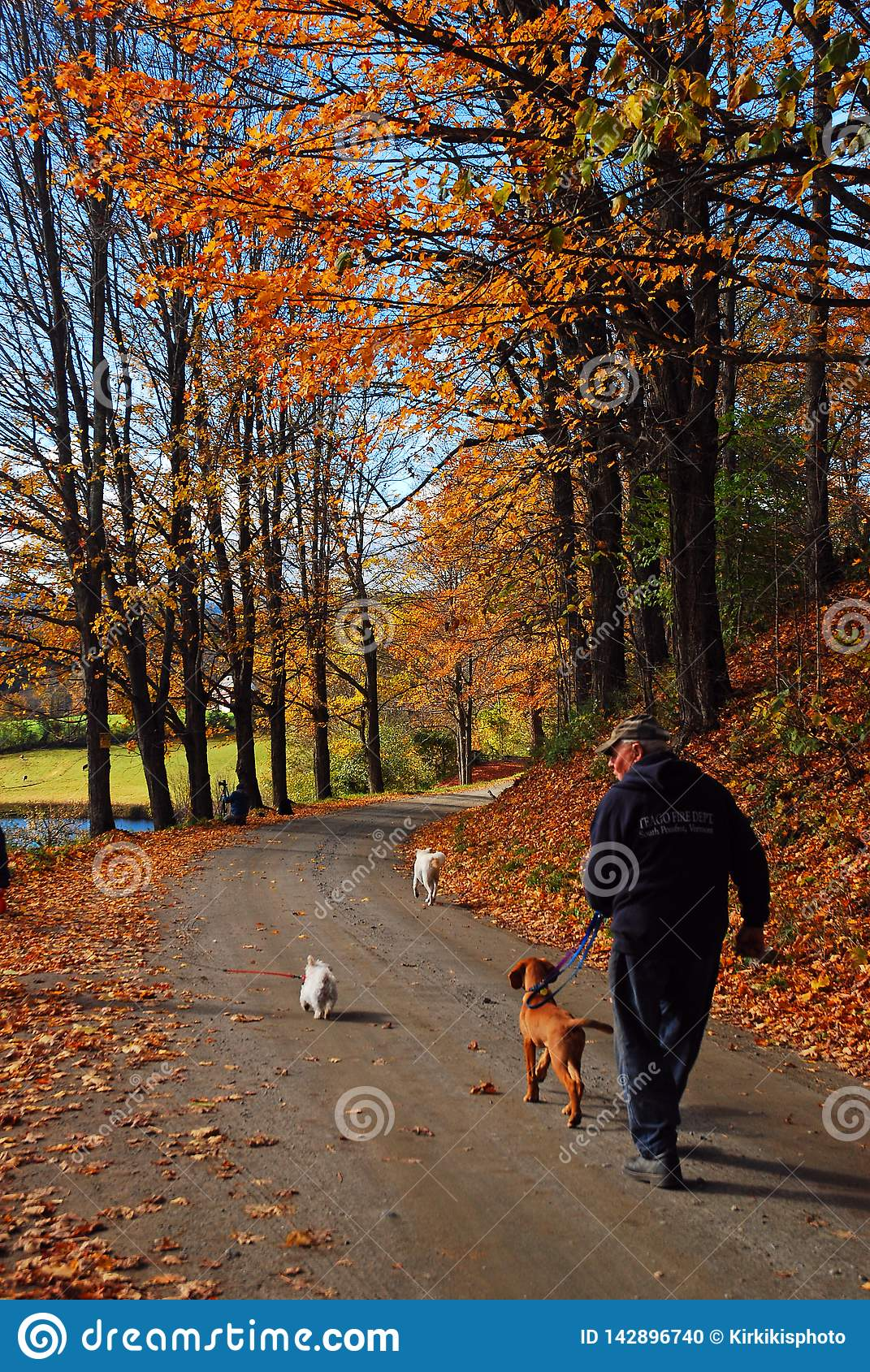 Walking the dog on an autumn day