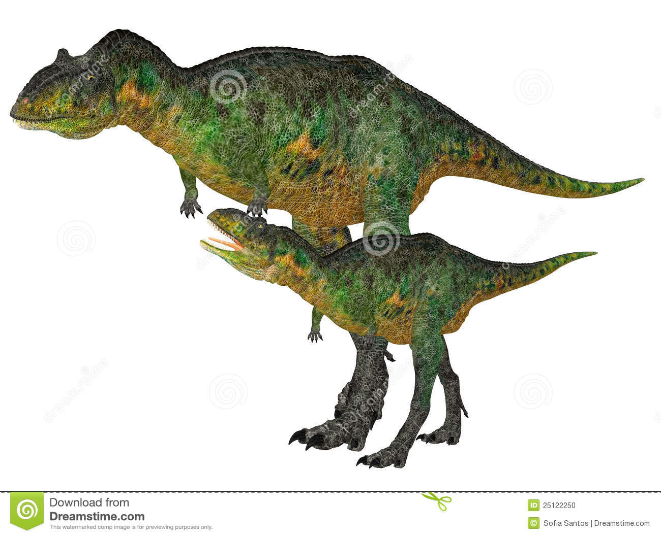 Adult and Young Aucasaurus