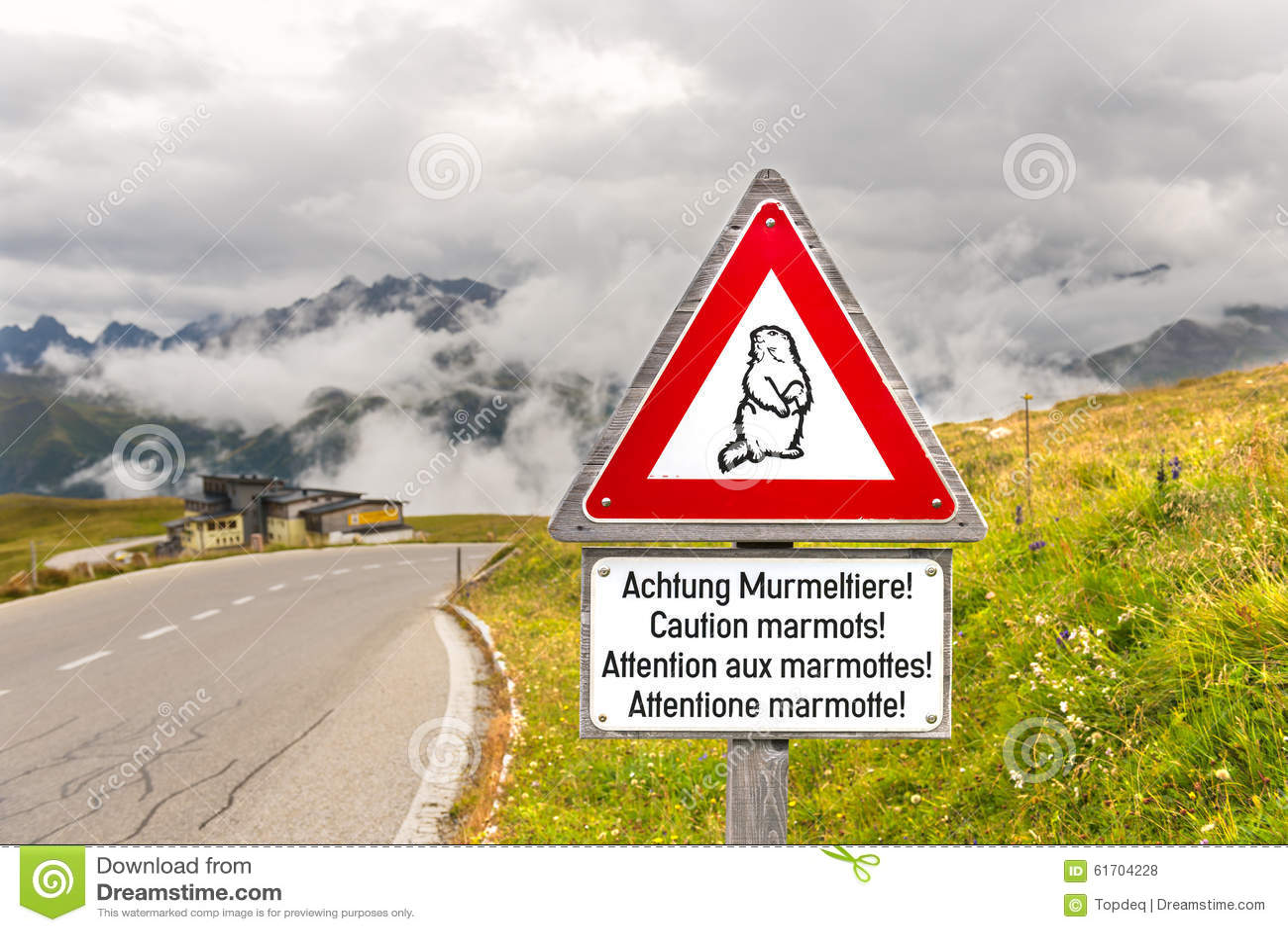 Advirta o sinal de tráfego das marmota em uma estrada alpina