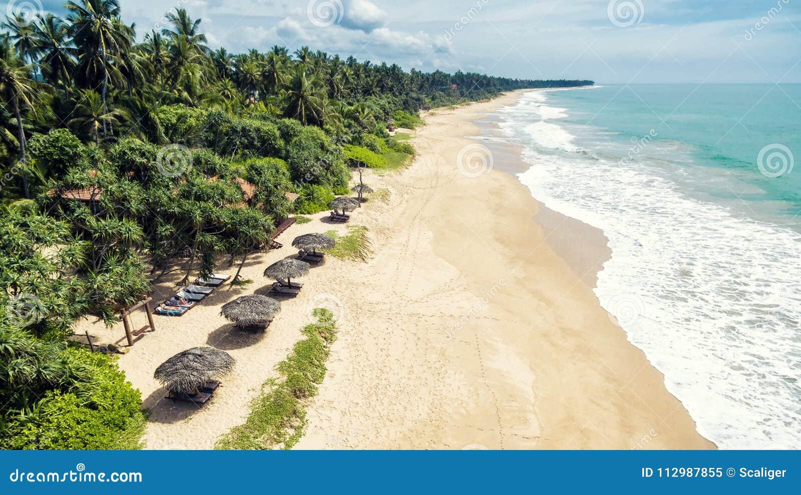 Aerial panoramic view of the tropical long beach, Sri Lanka