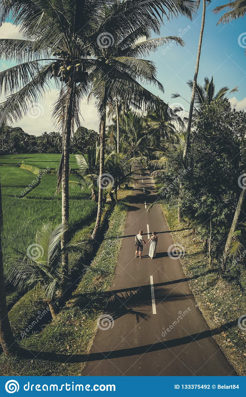 Aerial Shot Of Young Couple Walking Among Coconut Palm ...