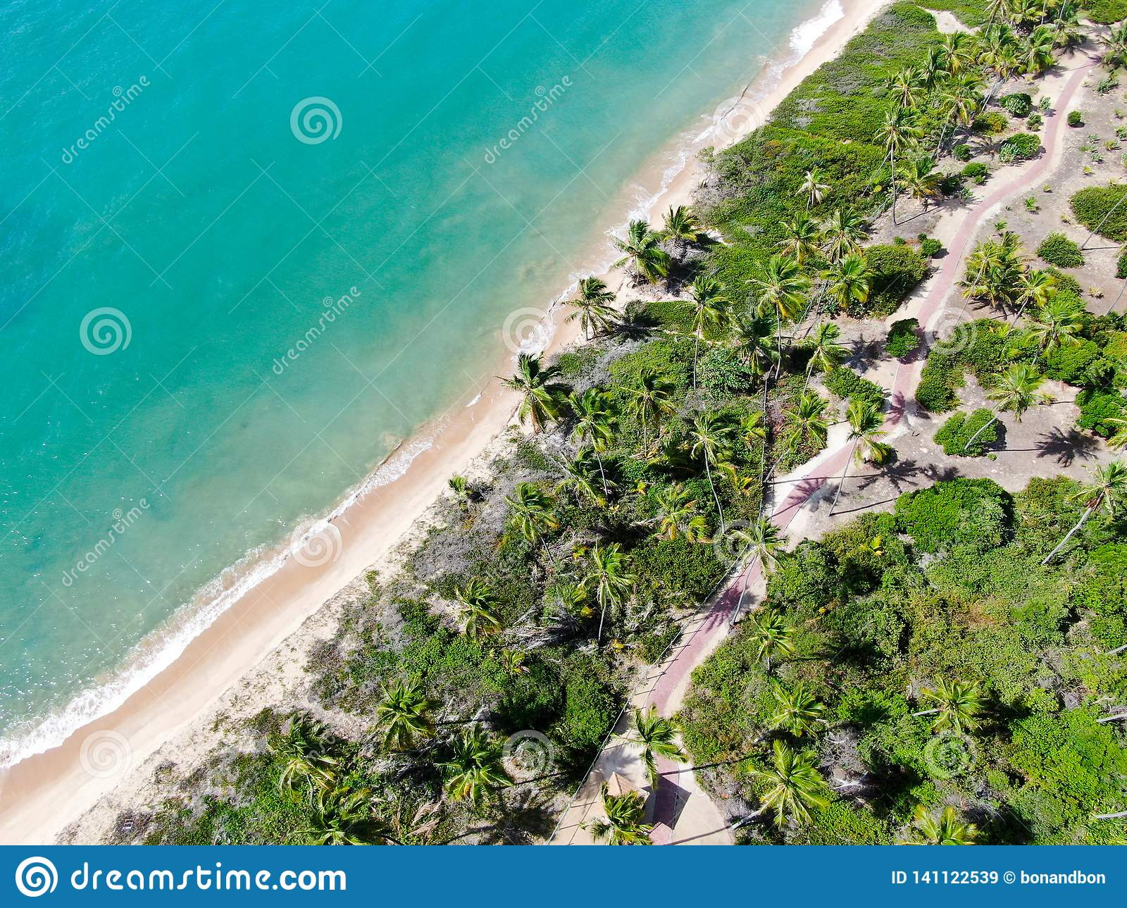 Aerial top view of tropical white sand beach and turquoise clear sea water with small waves and palm trees background.