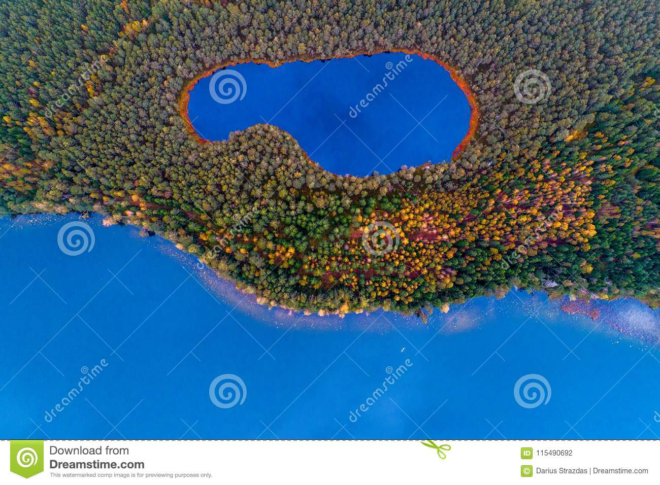 Aerial top view of two lakes in forest