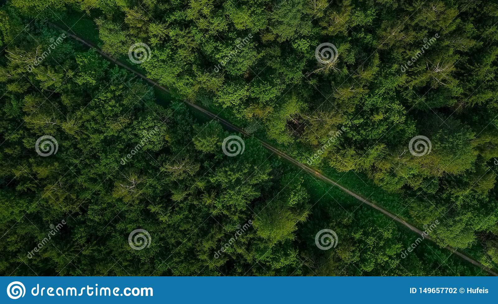 Aerial veiw of empty road in green forest. drone shot.