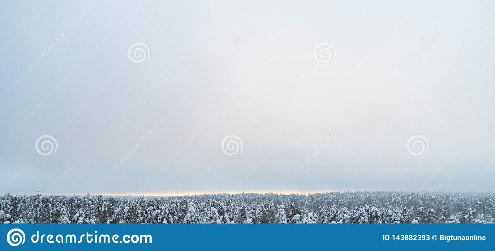 Aerial view of a winter snow-covered pine forest. Winter forest texture. Aerial view. Aerial drone view of a winter landscape. Sno