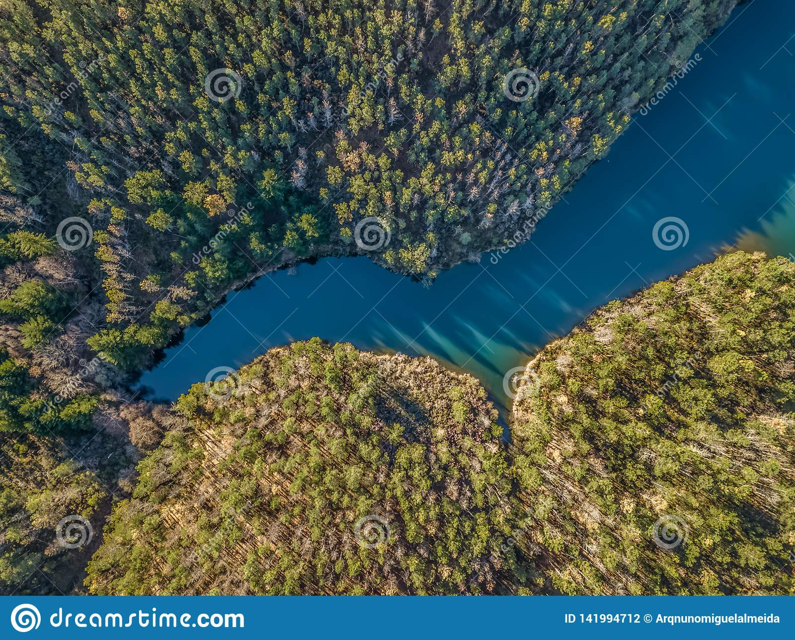 Aerial view of drone, artificial lake and dense forest on the banks