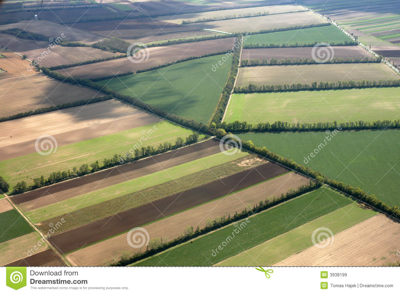 Download Aerial View Of Farm Fields Stock Image Growth