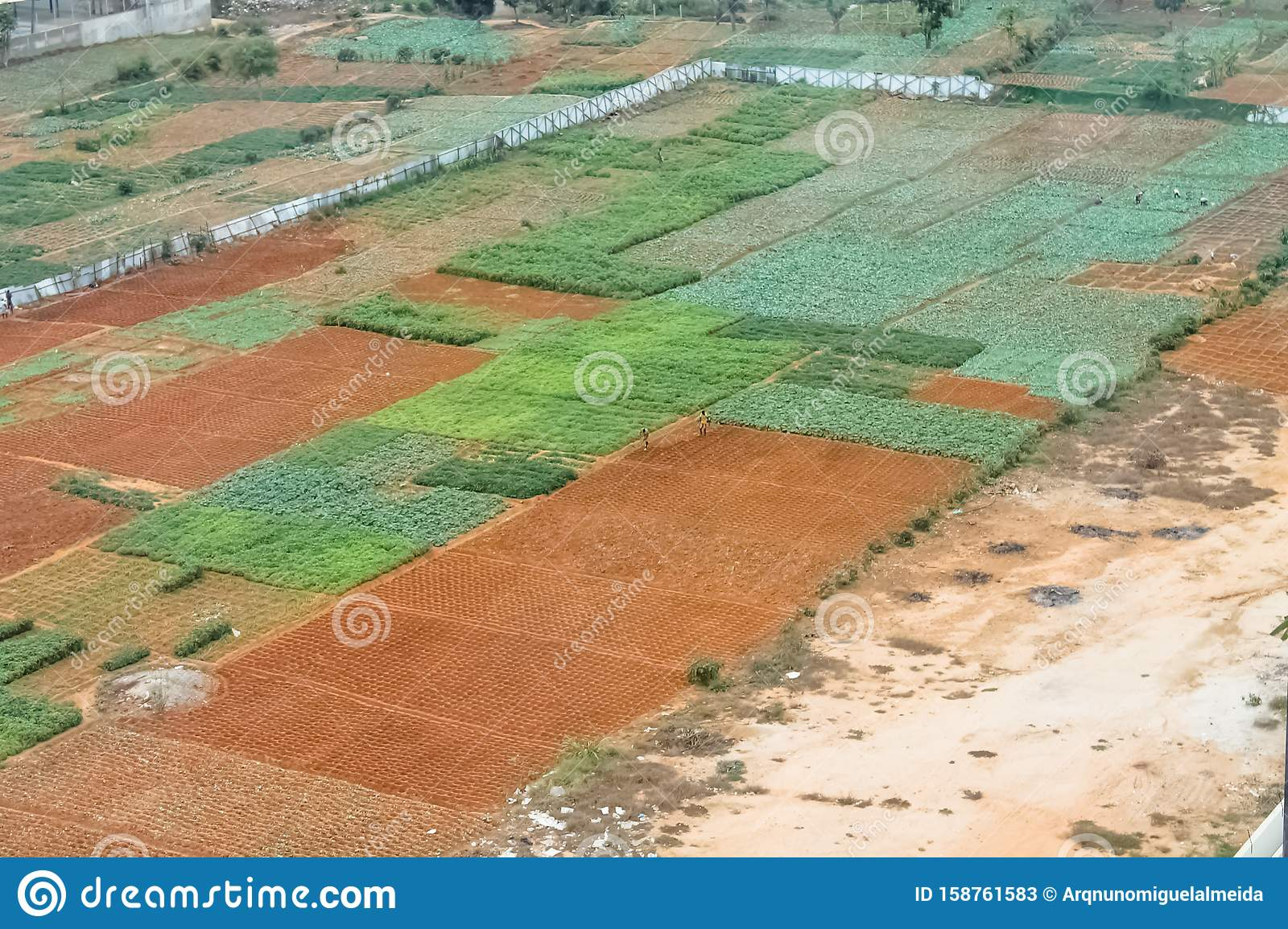 Aerial view of farmland for traditional agriculture with traditional farmers cultivating the land
