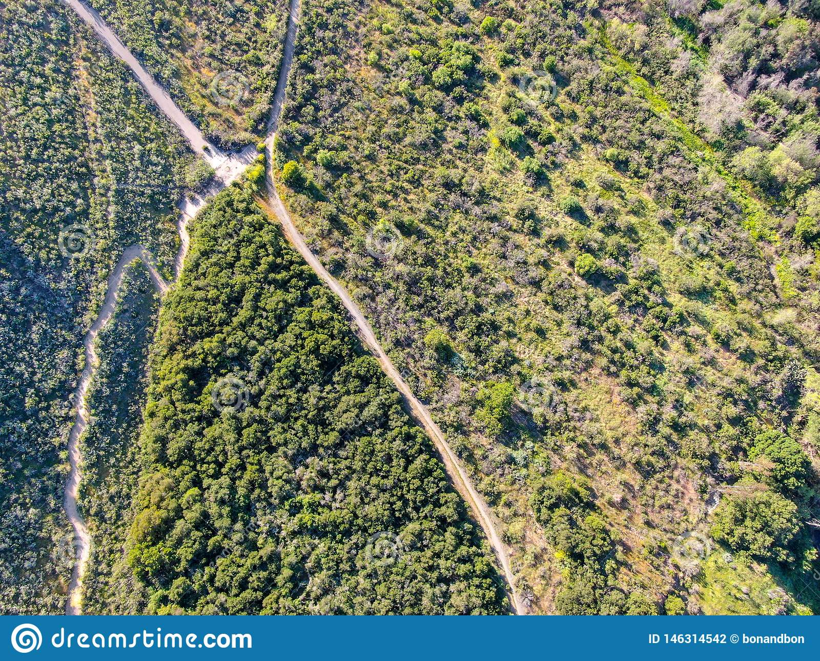 Aerial view of hiking sandy trails in dry green mountain