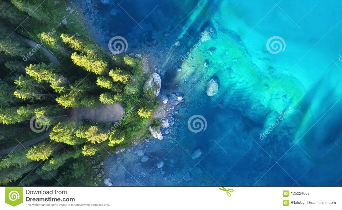 Aerial view on the lake and forest. Natural landscape from drone.