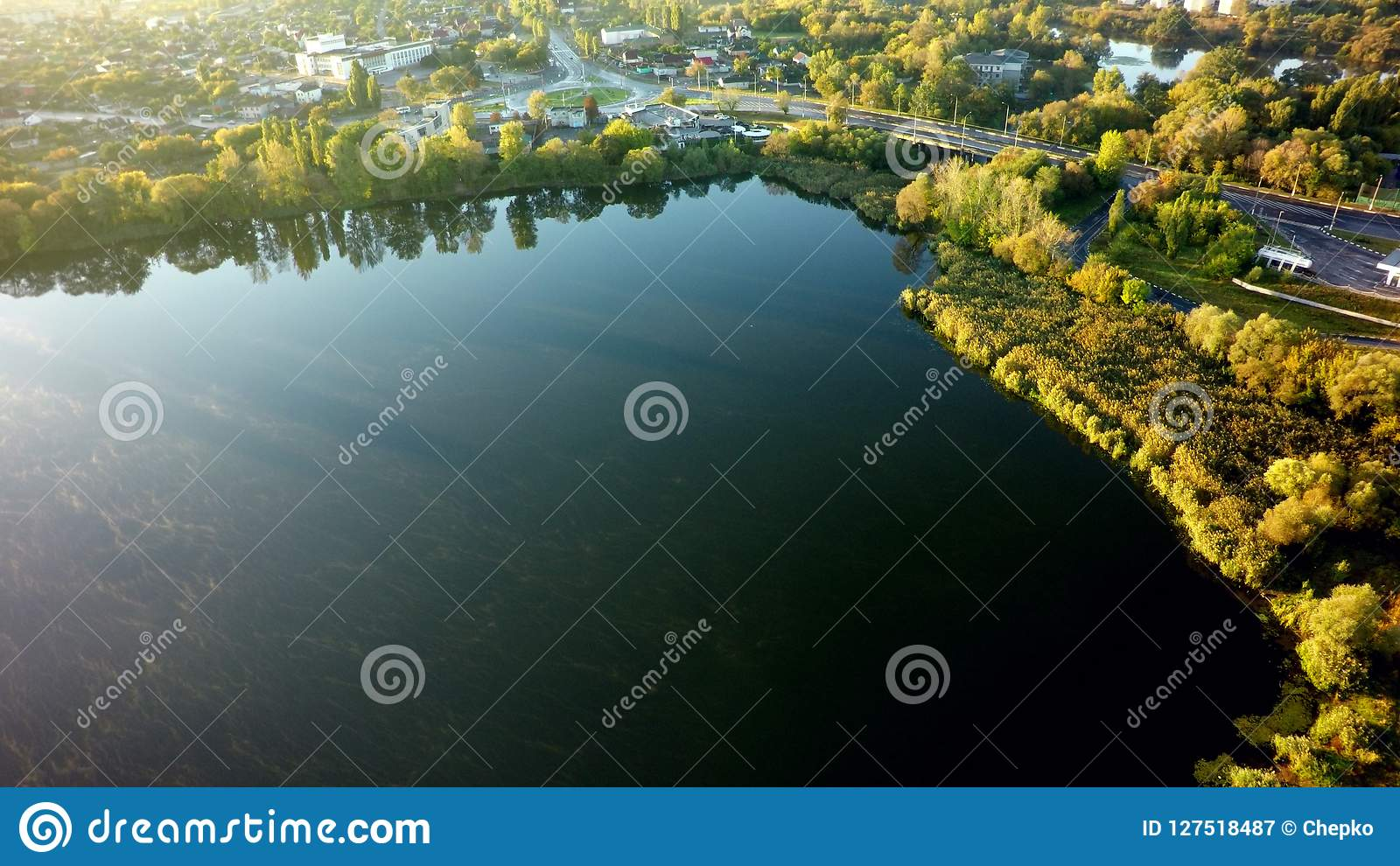 Aerial view on the lake and tree in city