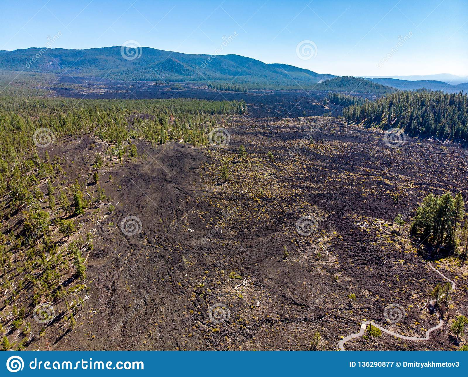 Aerial view of Lava Cast Forest of Newberry Volcano Monument