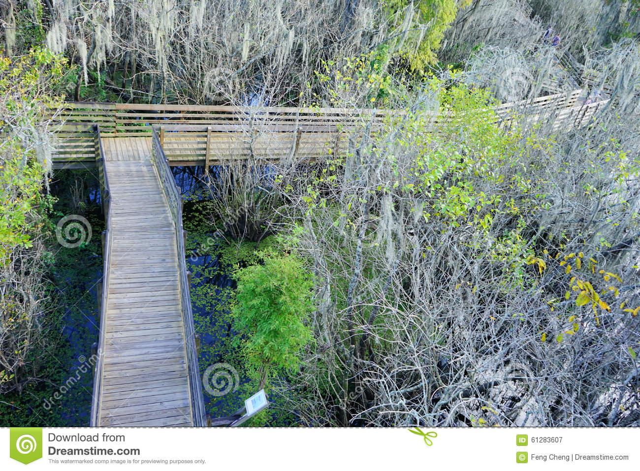 Aerial view of Lettuce Lake Park,