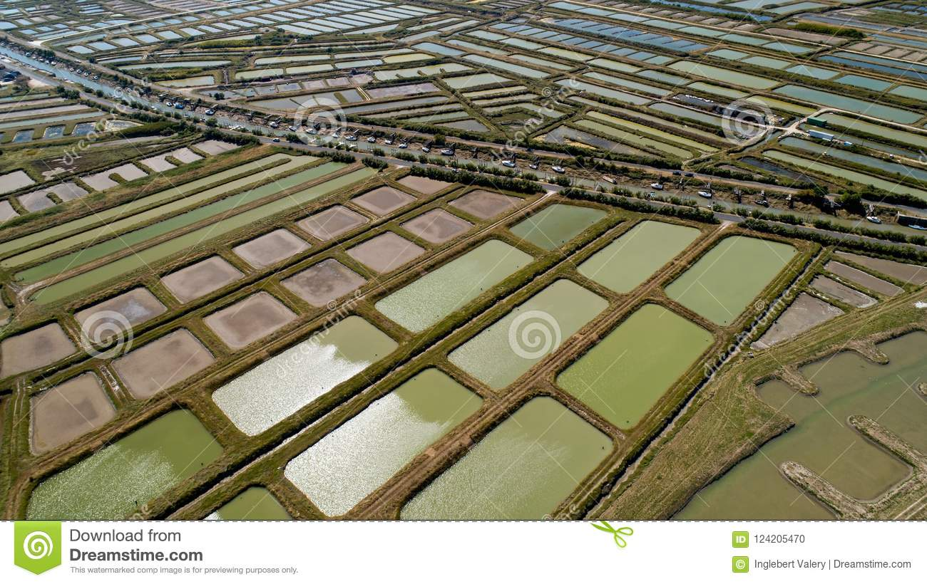 Aerial view of oysters farms in Marennes, Charente Maritime