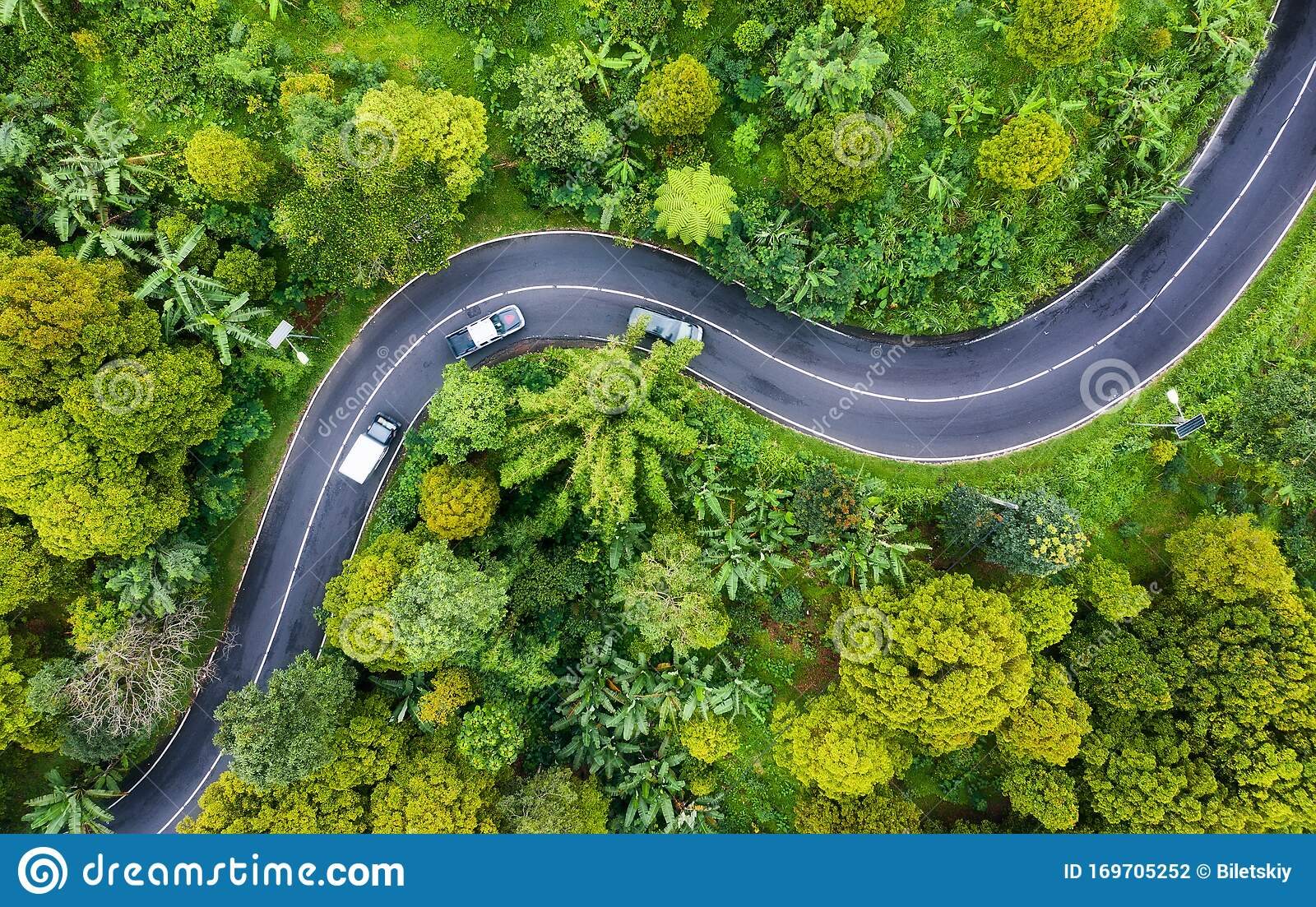 Aerial View On Road In The Forest Highway Throu The Forest View From A Drone Natural Landscape In Summer Time From Air Stock Photo Image Of Asphalt Drive 169705252