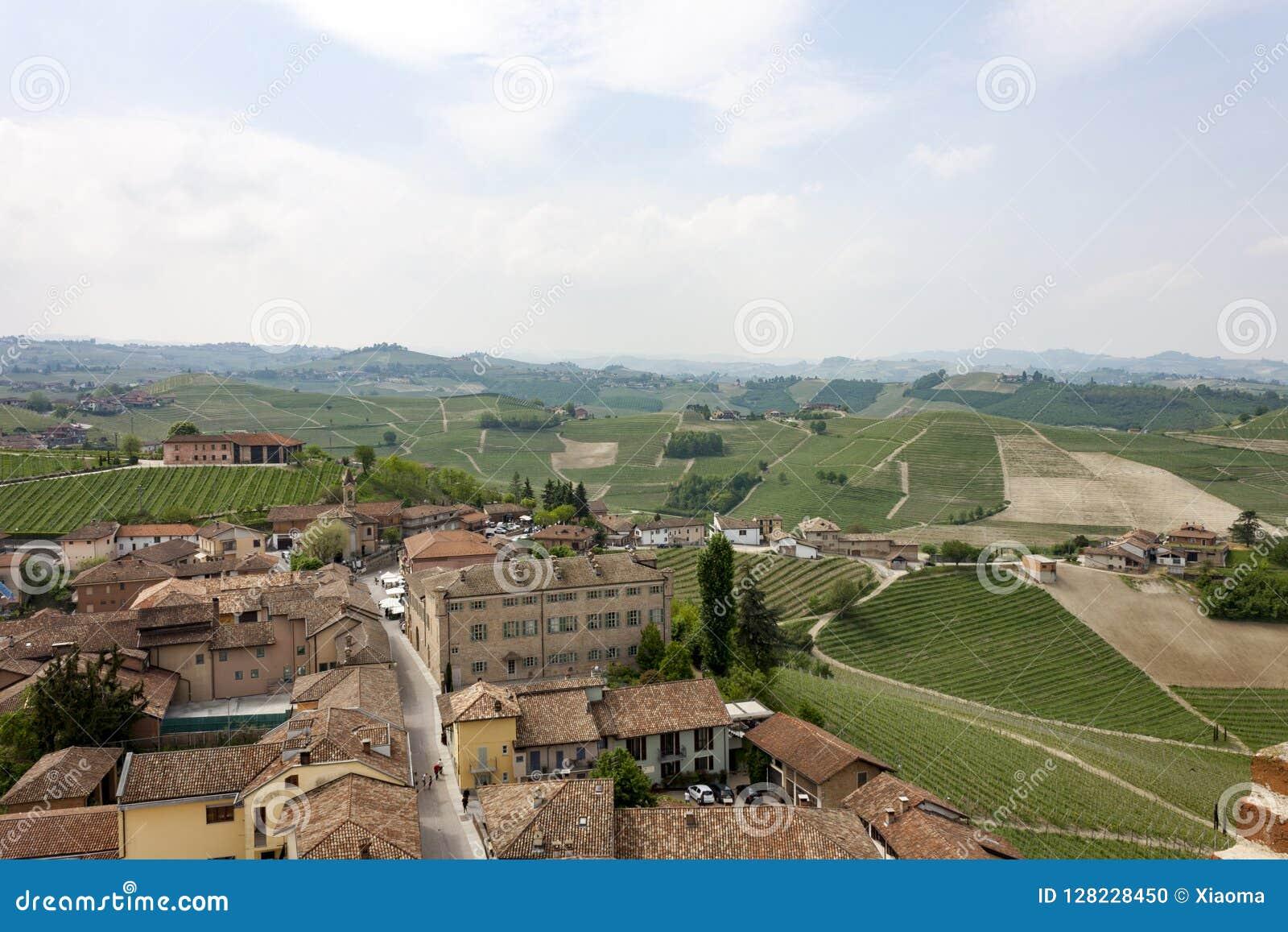Aerial view of the vineyards of Barbaresco, Piedmont.