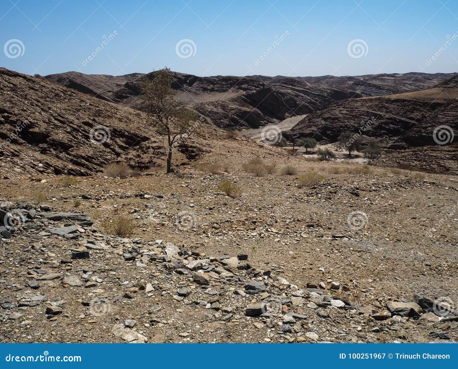 Affärsföretagresan till och med utmärkt vaggar bakgrund för bergpanoramalandskapet av unik geografi för den Namib öknen med den b