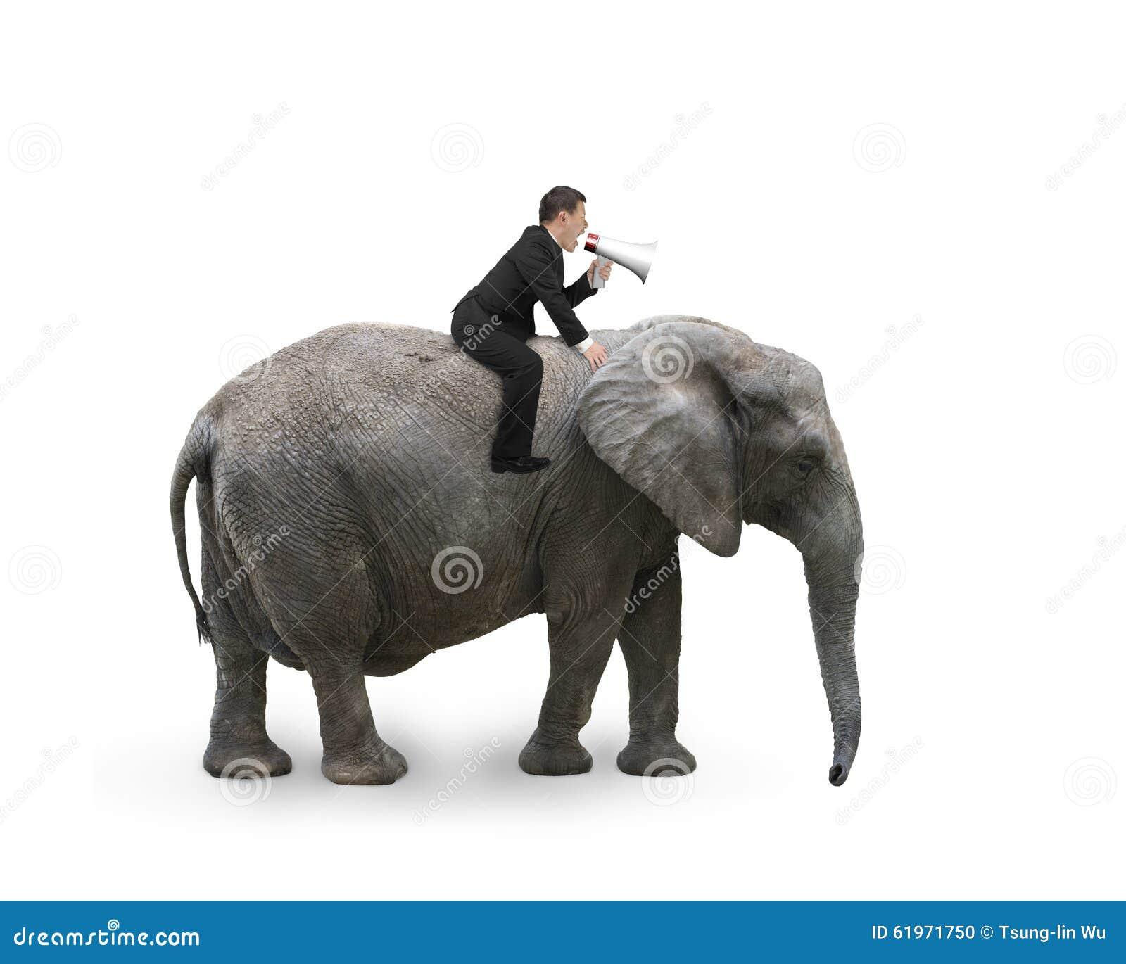 Affärsman med att använda högtalareridning på att gå elefanten