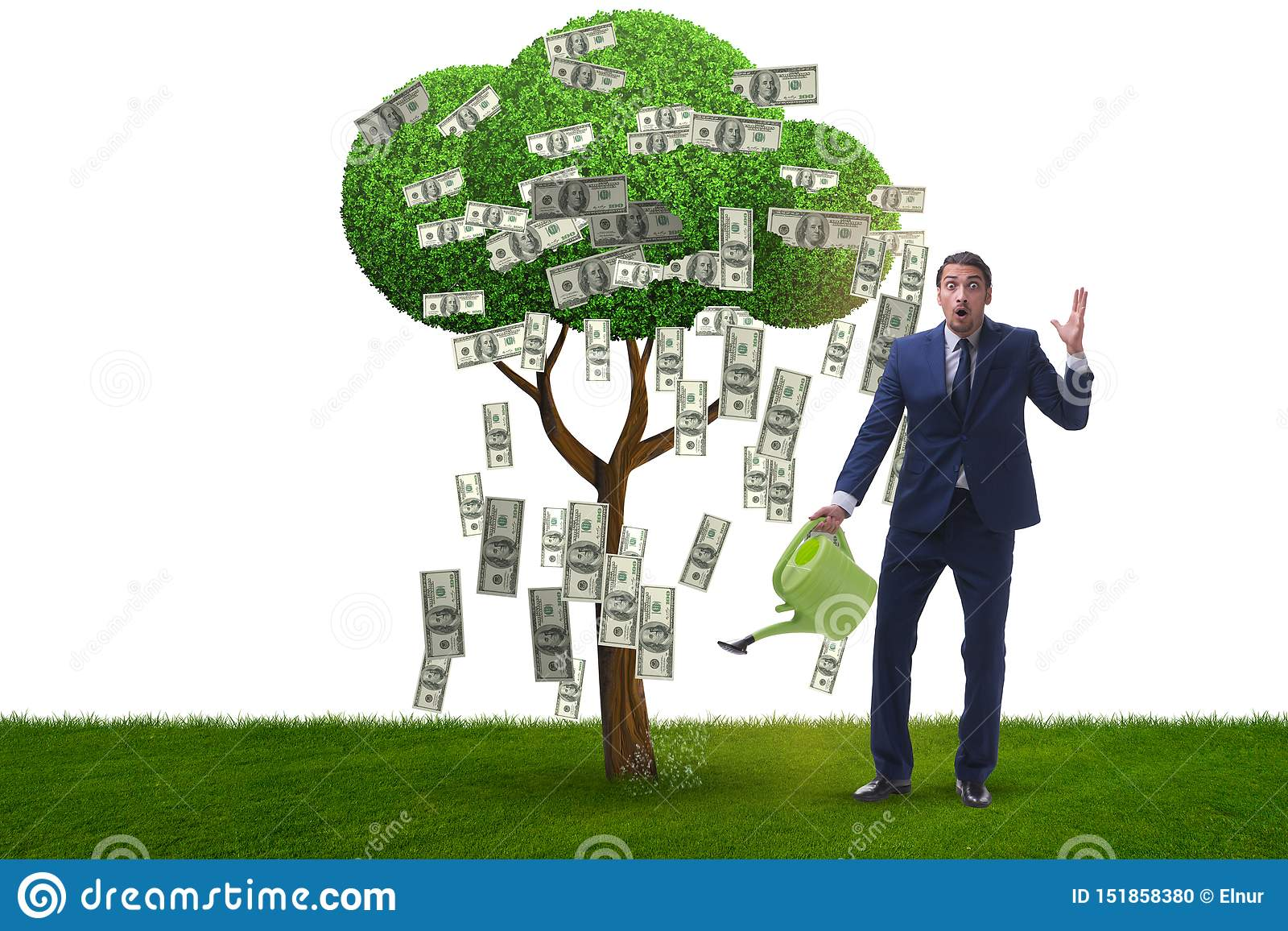 Affärsman som bevattnar pengarträdet i investeringbegrepp