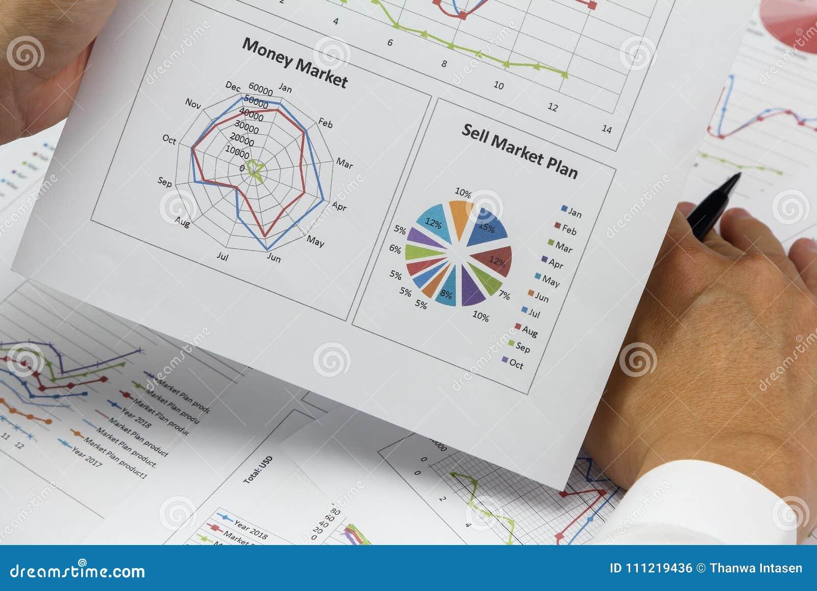 AffärsmanSummary rapport och plan för pengarmarknad som analyserar försäljning