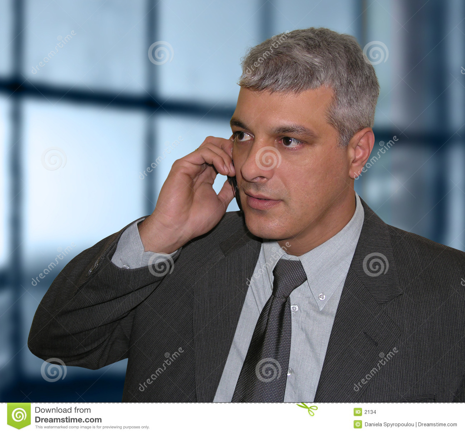 Download Affärsmantelefonsamtal arkivfoto. Bild av konversation, ledare - 2134