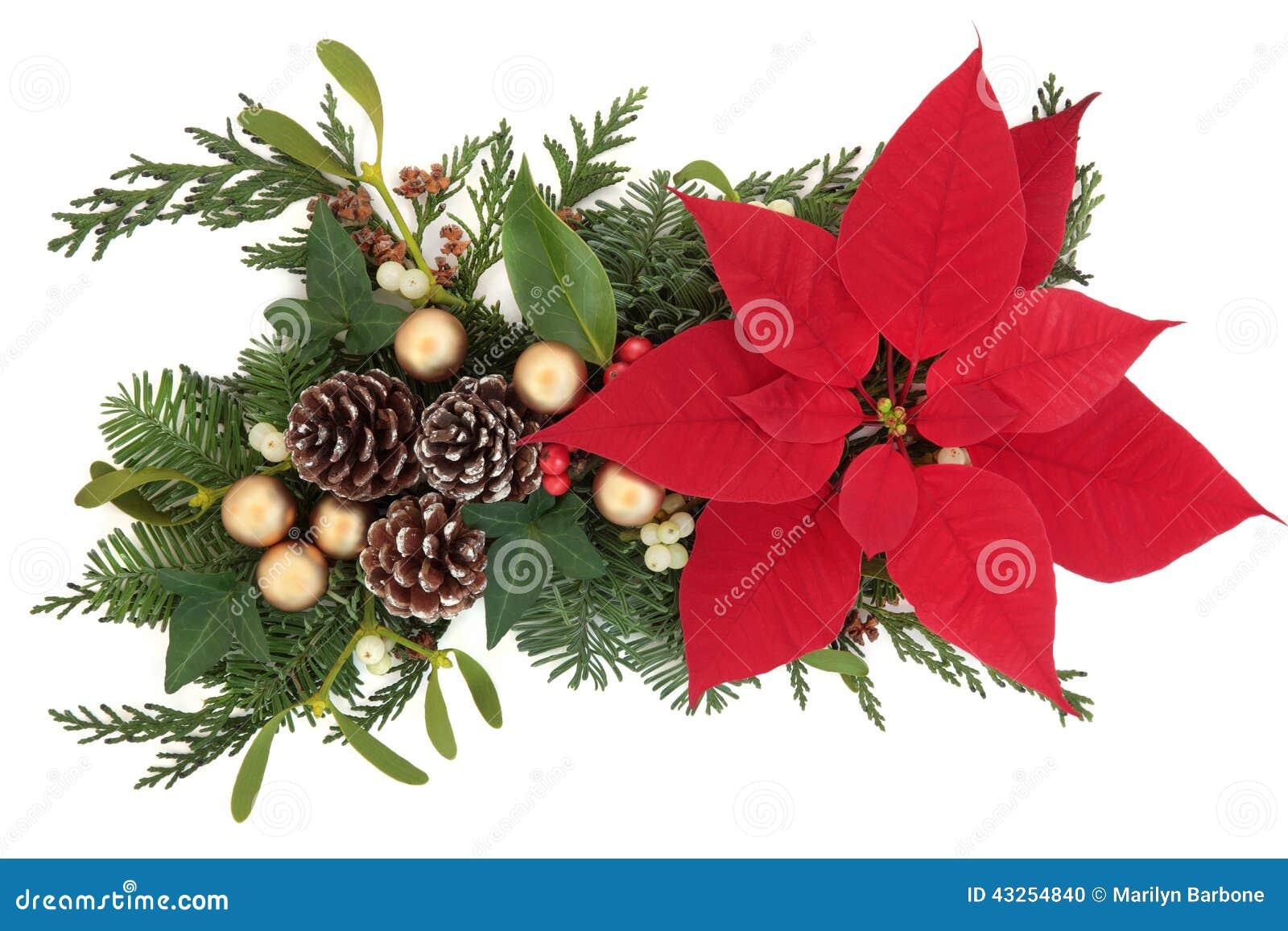 Affichage floral de no l photo stock image du houx for Composition florale exterieur hiver
