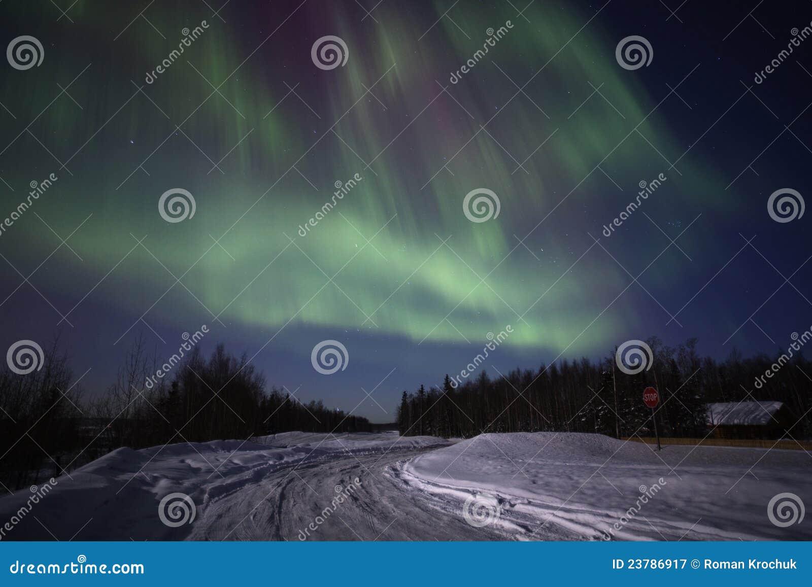 Affichage multicolore intense des lumières nordiques