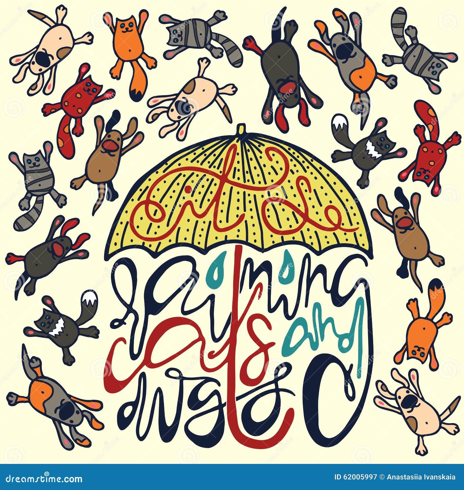 Proverbe Il It S Rain Dogs Ands Cats