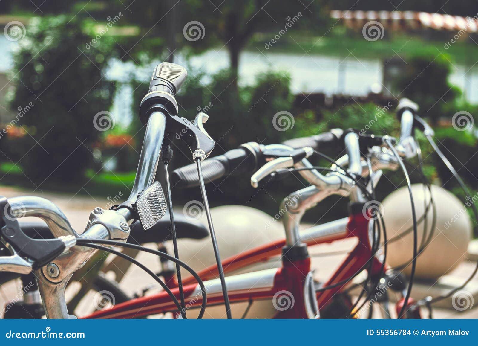 Affitto della bici