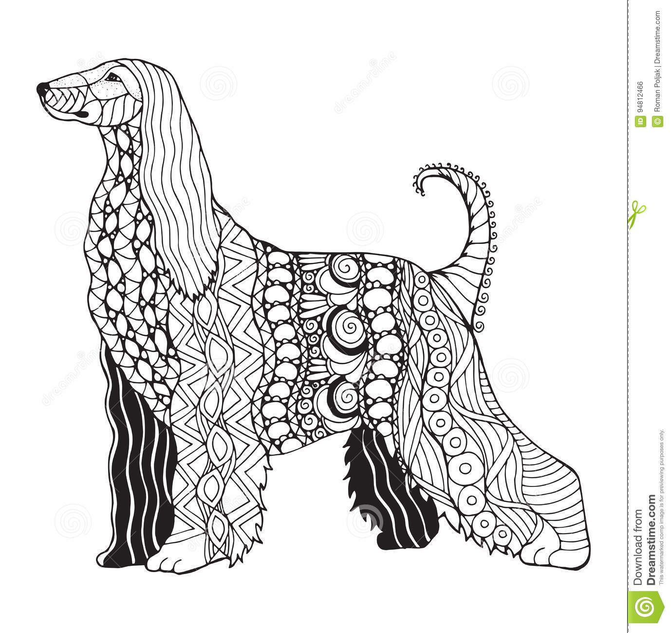 Todd Clipart 20 Fee Cliparts Download Imagenes: Afghan Hound Stock Illustrations