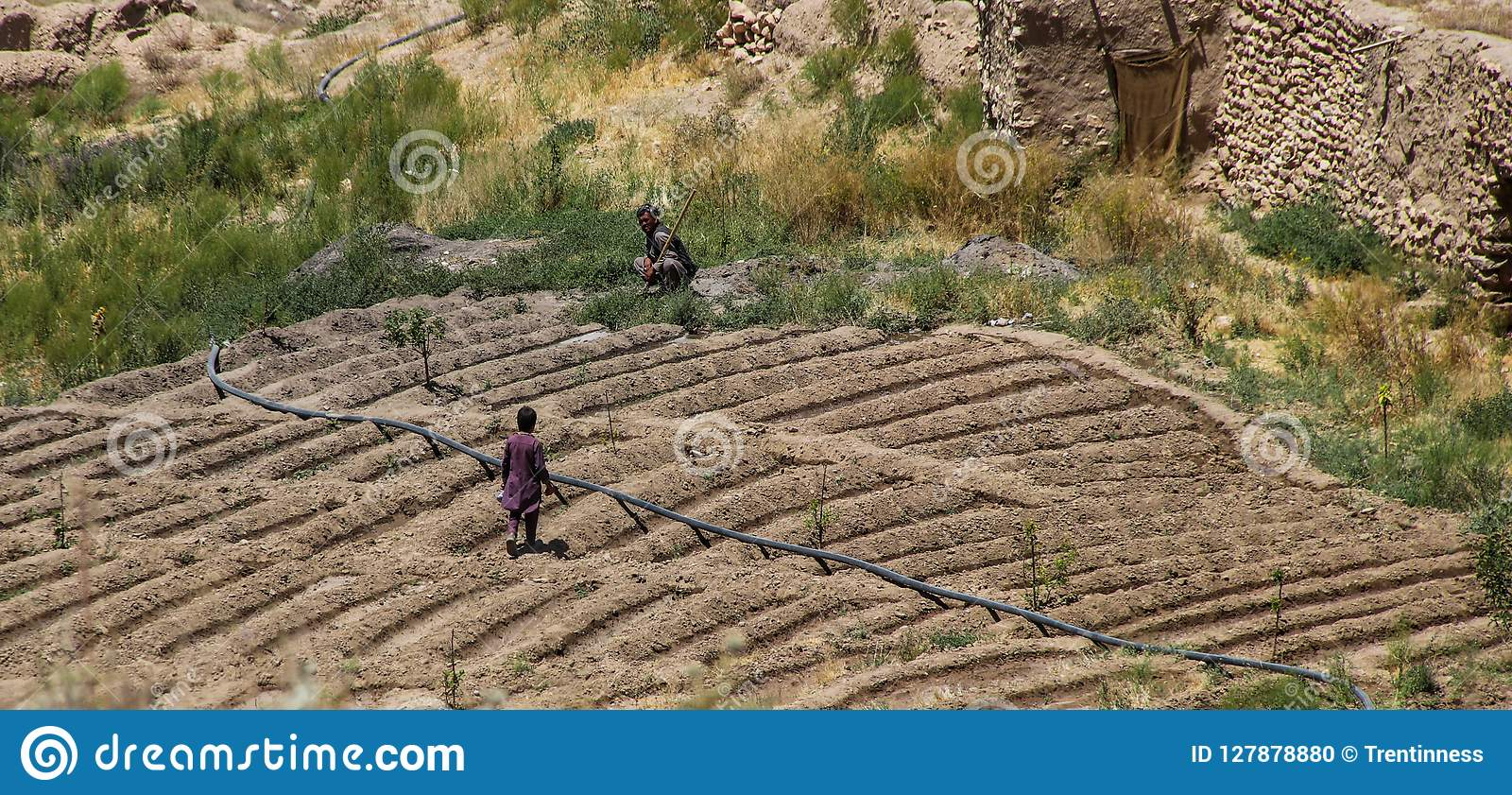 Afghanistan villagers working their plot of landctll of the school
