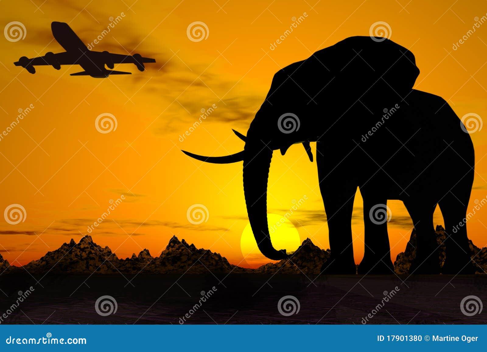 Africa lopp