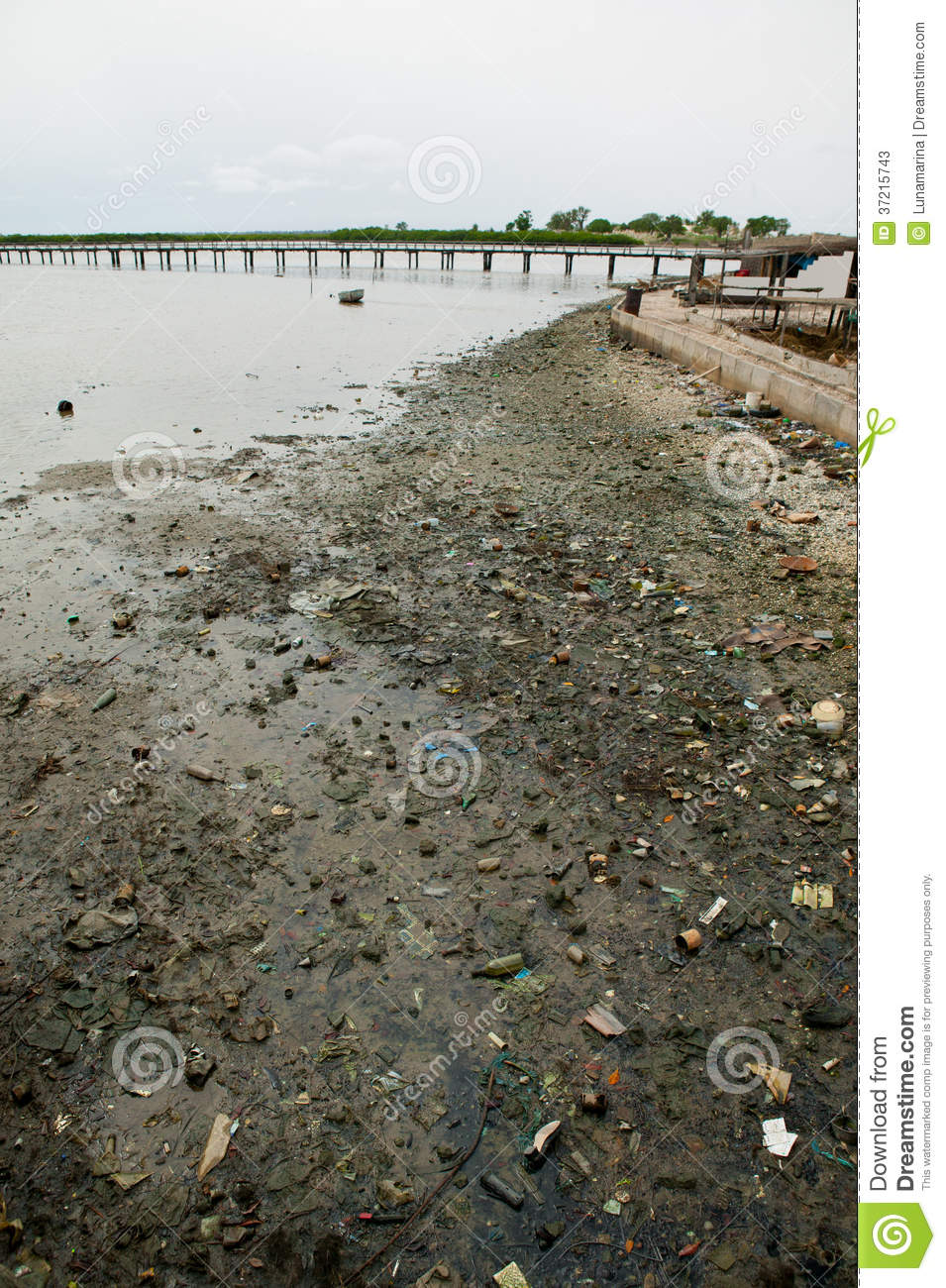 land pollution in south africa Wessa implements effective environmental, ecotourism, education and youth  development programmes throughout south africa, and activates a wide range of .