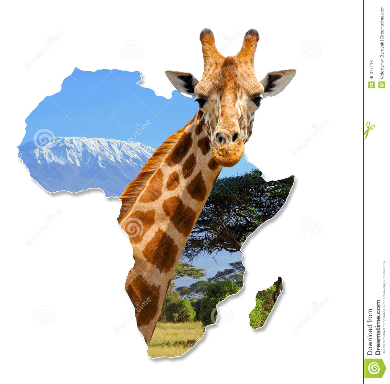 Africa Wildlife Map Design stock photo Image of ancient 40377118
