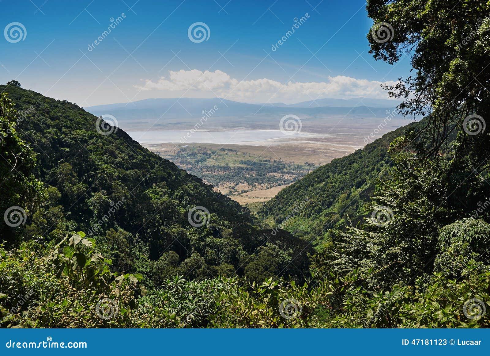 000 25 180 Africa wzdłuż zwierząt w przybliżeniu terenu Arusha konserwaci krateru gęstości dziedzictwa wysokich średniogórzy km k