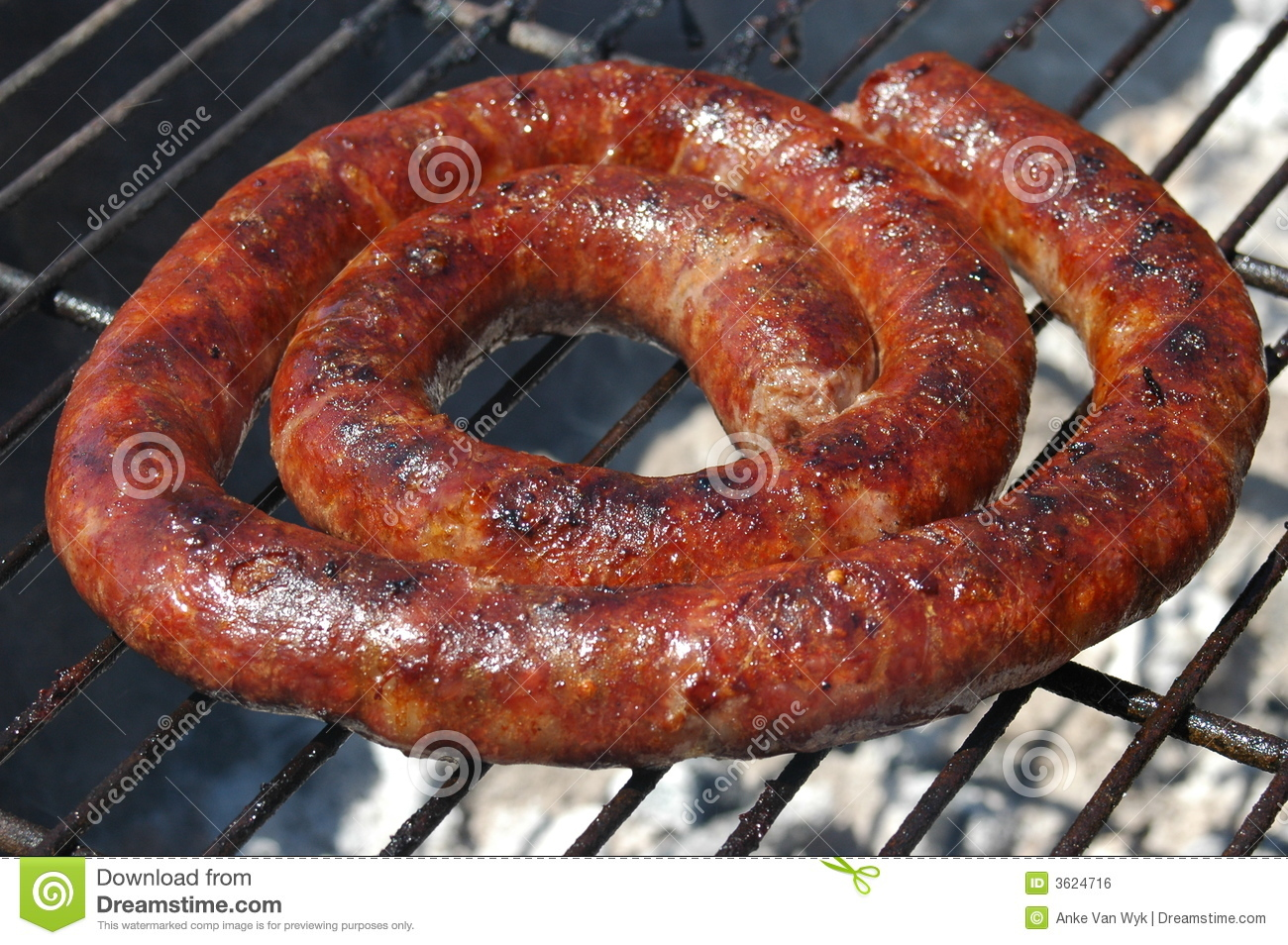 ... Springbok Boerewors on a barbecue outdoors in summer in South Africa