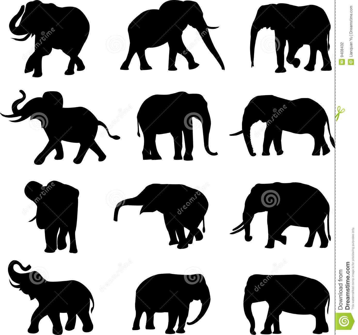 African elephants and ...