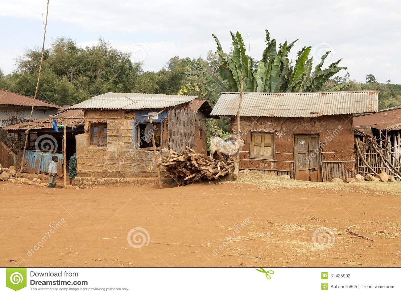Delightful African House Plans #3: African-house-houses-dorze-village-guge-mountains-ethiopia-31435902.jpg