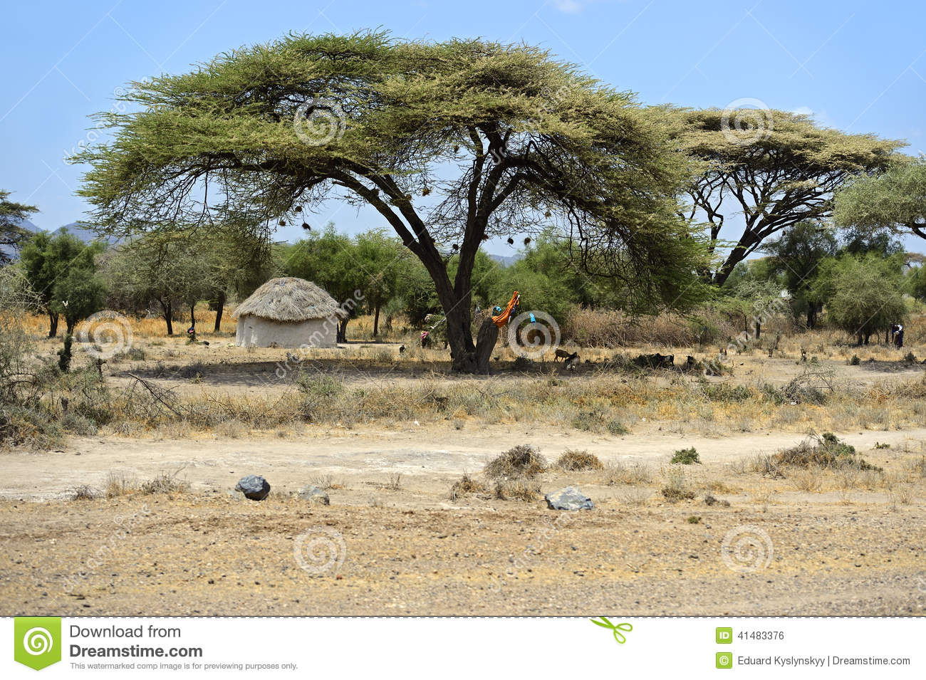 African House Stock Photo Image Of Identity Continent 41483376
