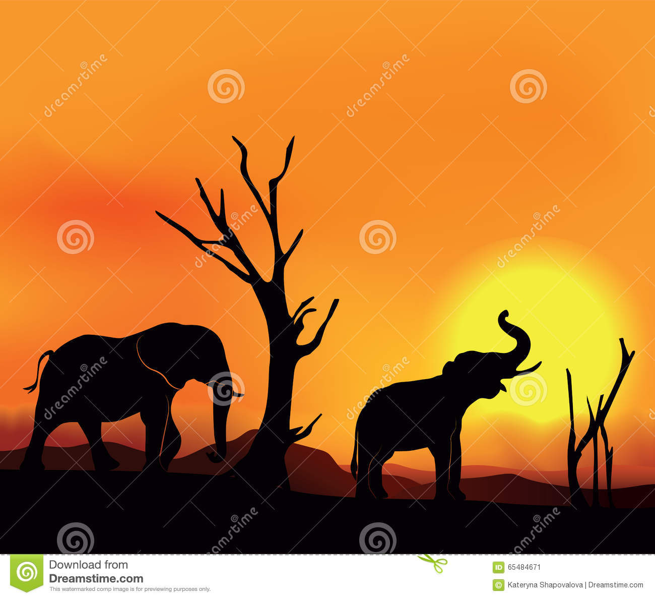 african landscape sunset with elephants stock vector