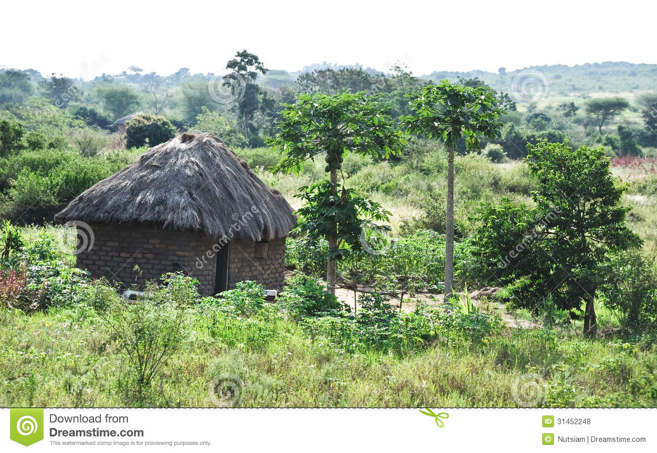 African Life Stock Photo Image Of Africa Landscape 31452248