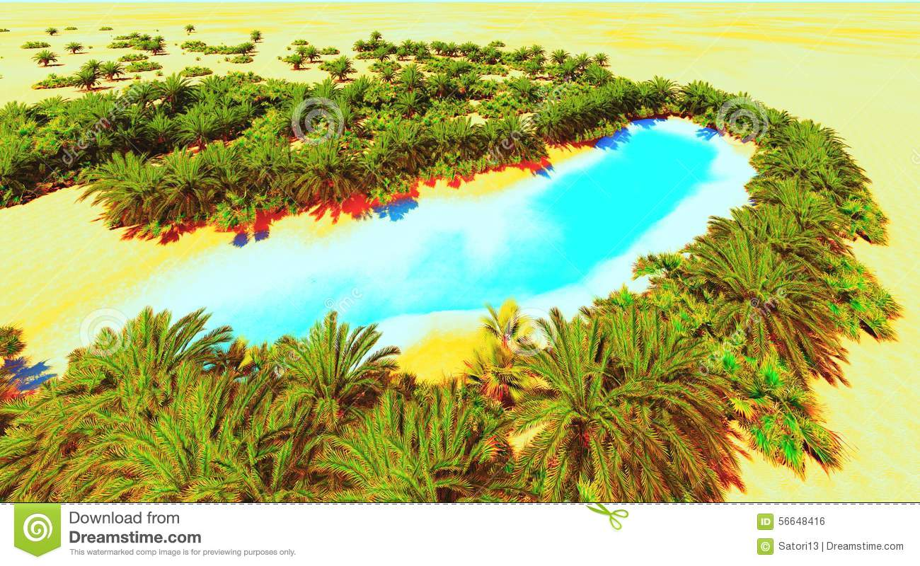 African Oasis Stock Photo Image Of Palm Bright Summer 56648416