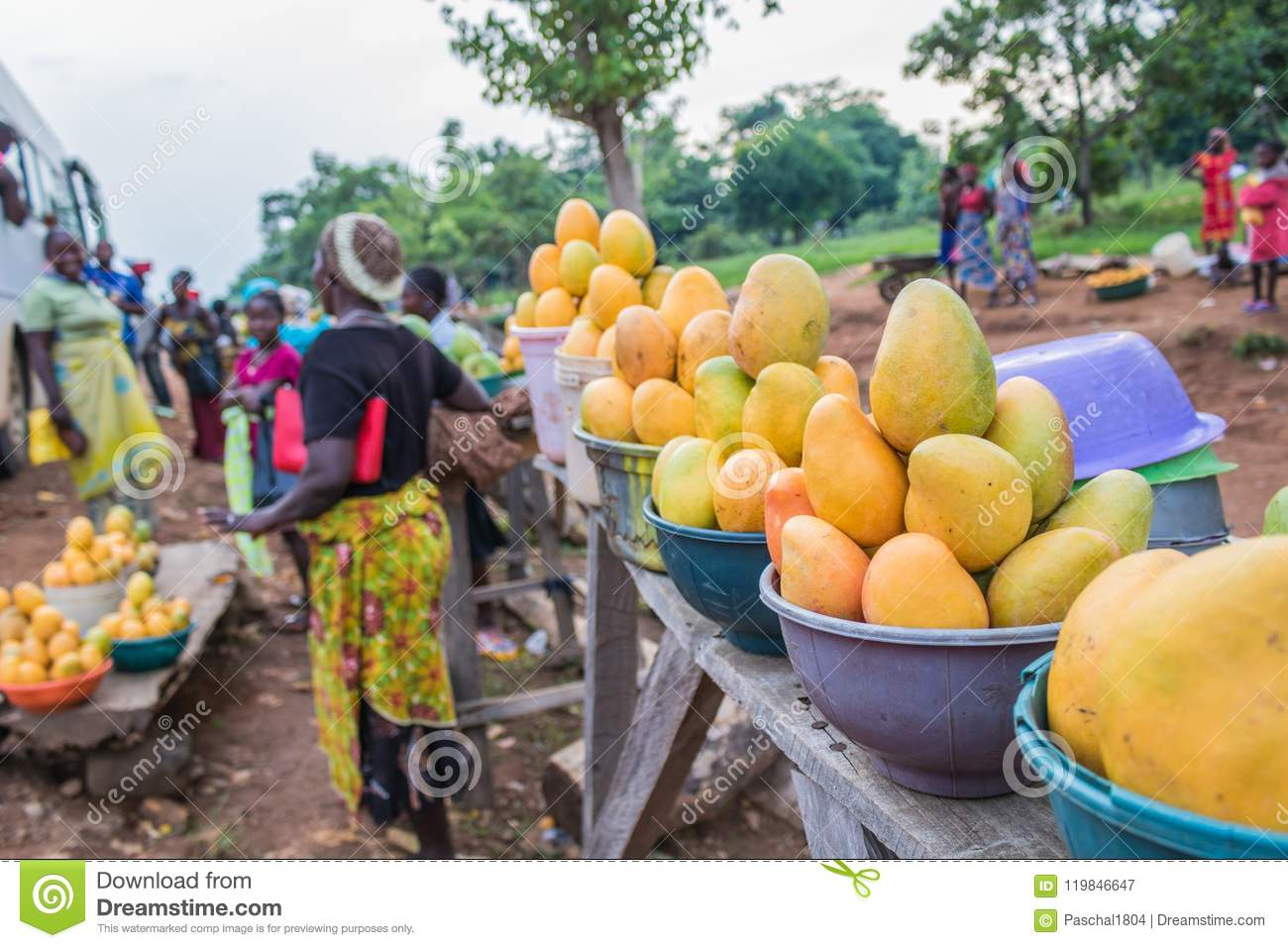 African Red Yellow And Green Mangoes 5 Editorial Photography